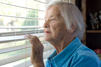 Elderly woman, living alone, peering through blinds at the world outside.