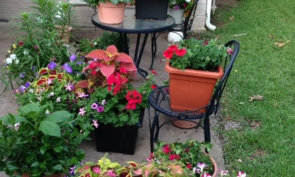 Beth's Garden